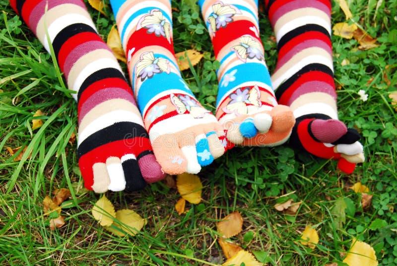 Socken im Herbst. stockfotografie