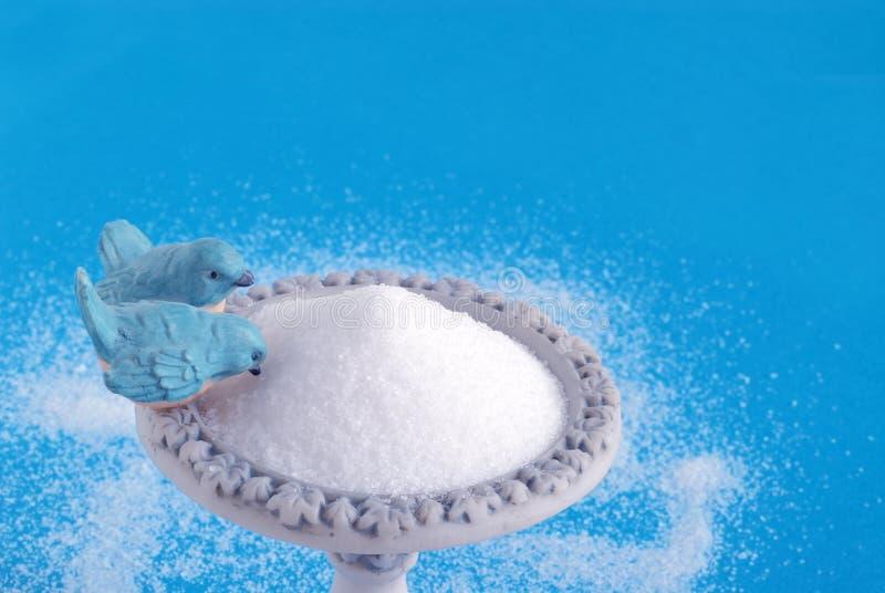 socker för förlagematare för bunke för bakgrundsfågel blått royaltyfria foton
