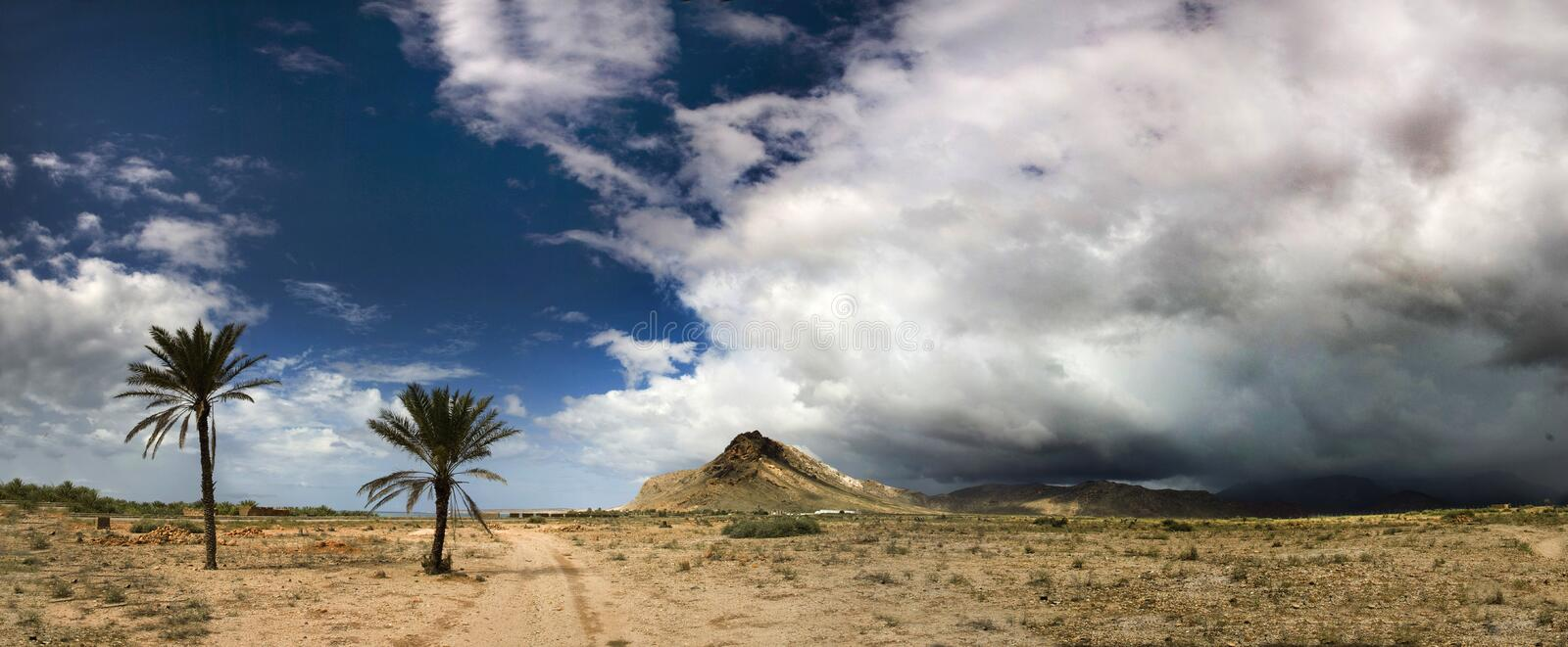 Socotra island landscape royalty free stock photo
