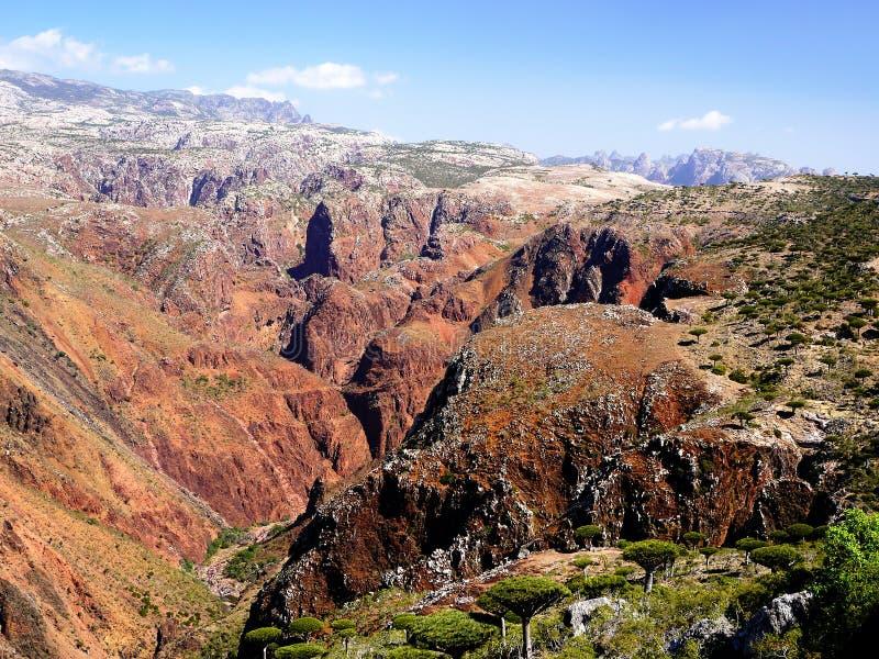 Socotra wyspy głąb lądu obraz stock