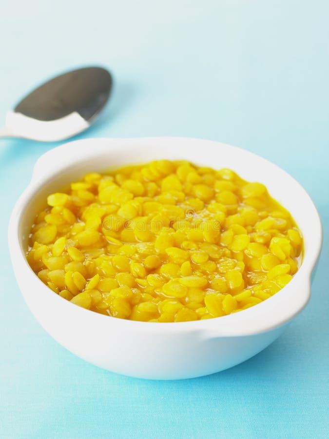 Soczewica curry zdjęcie royalty free