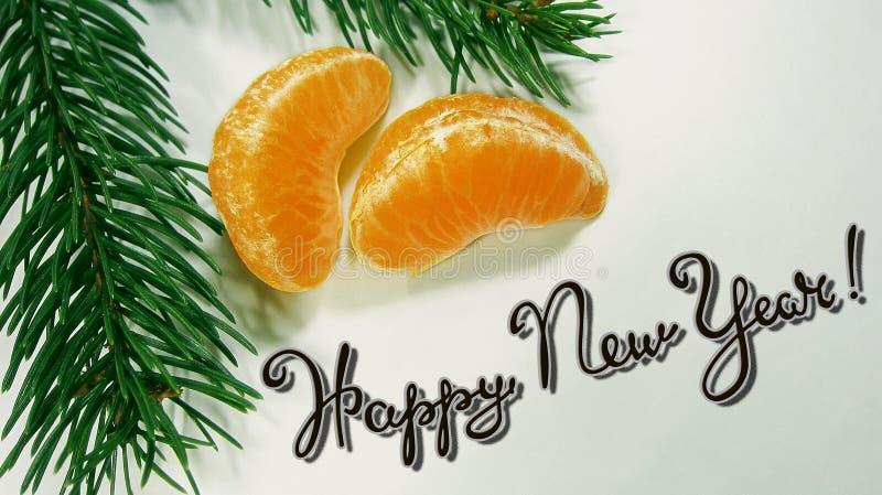 Soczyści jaskrawi pomarańczowi plasterki tangerines kłamają wraz z zieloną gałąź jedlinowy drzewo na białym tle 7593 obraz stock
