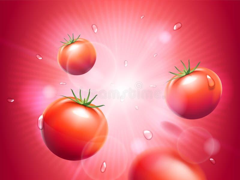 Soczyści pomidory z wodnymi kroplami na czerwonym opromienionym bokeh tle Silny sunbeam lub światło Projektów elementy dla ilustracji