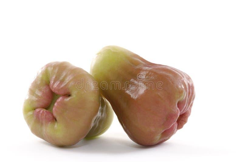 soczysta guava czerwień obraz royalty free