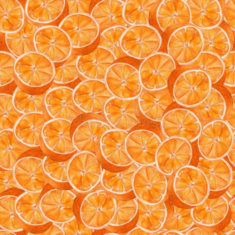 Soczysta pomarańcze akwareli sztuka Wręcza patroszonego bezszwowego wzór z cytrus owoc na białym tle ilustracji