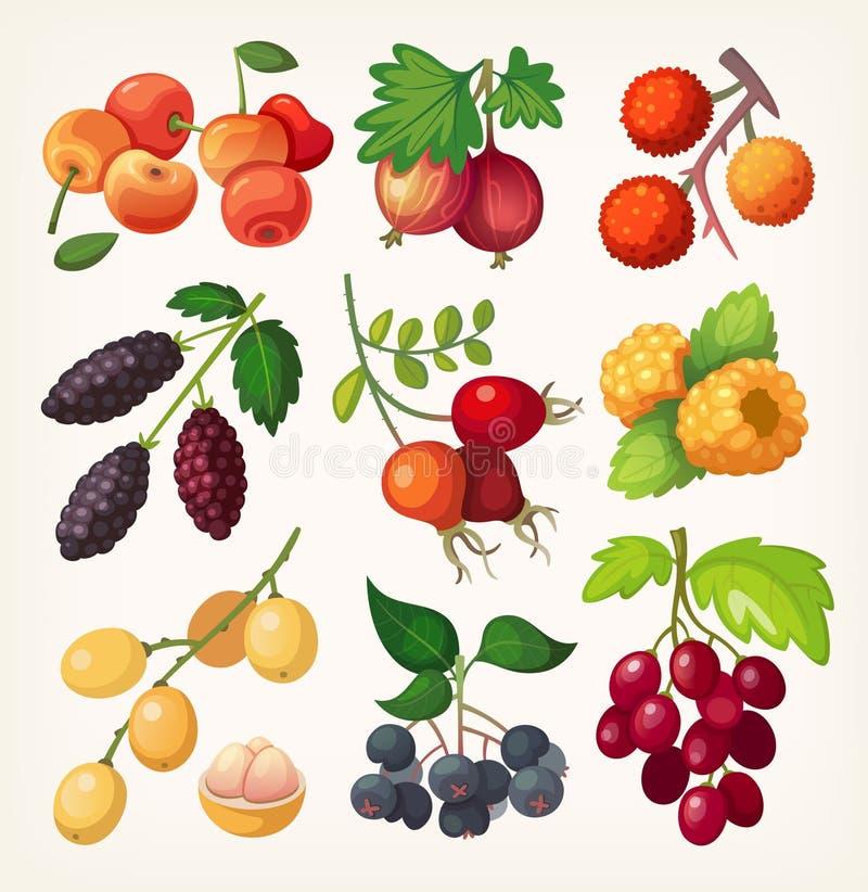 Soczyste kolorowe jagodowe ikony ilustracji