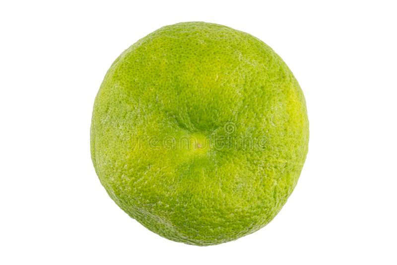 Soczystego wyśmienicie egzotycznego cytrus owoc puloweru hybrydowy biały grapefruitowy i pomelo cali na białym tle odizolowywając fotografia stock