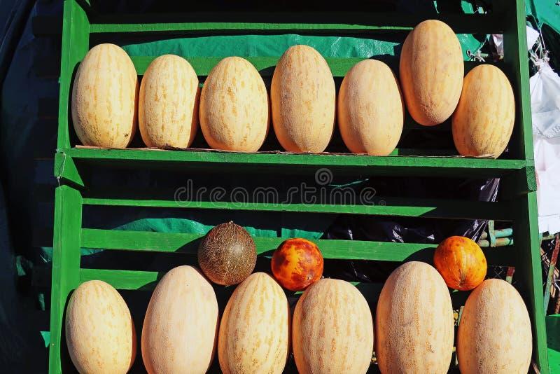 Soczysty dojrzały melon na rynku zdjęcie stock