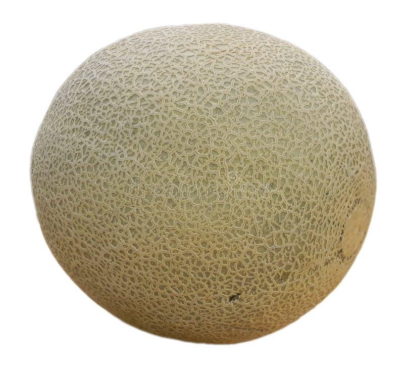 Soczysty dojrzały melon odizolowywający obraz stock