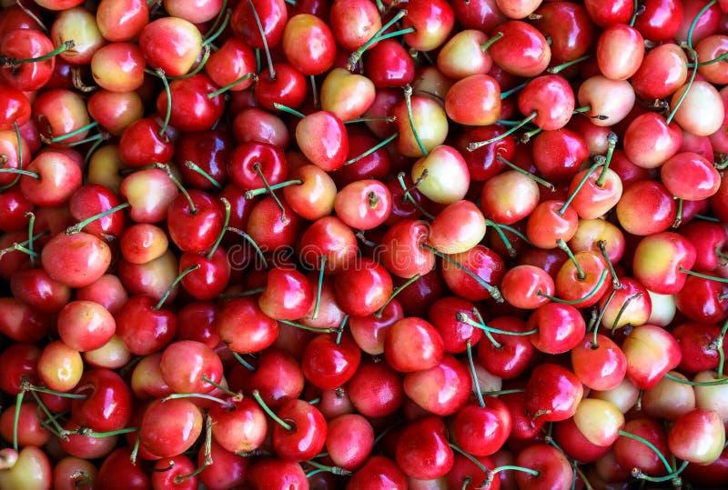 Soczystych wiśni owocowy tło, odgórny widok zdjęcia stock
