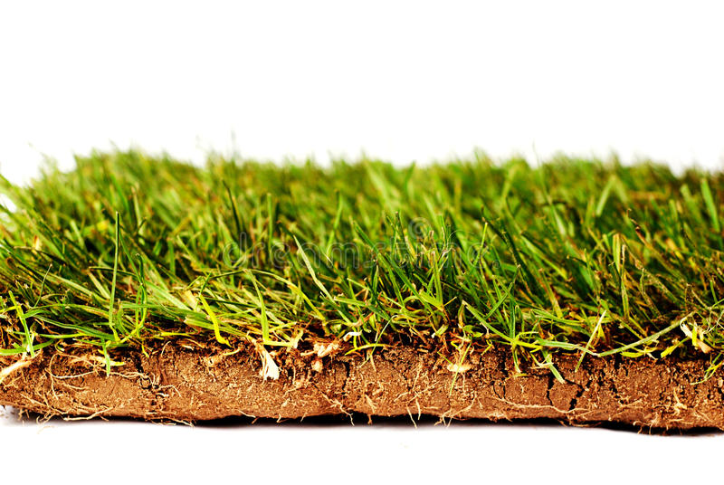 Sod. Lawn, sod, glass in roll royalty free stock images