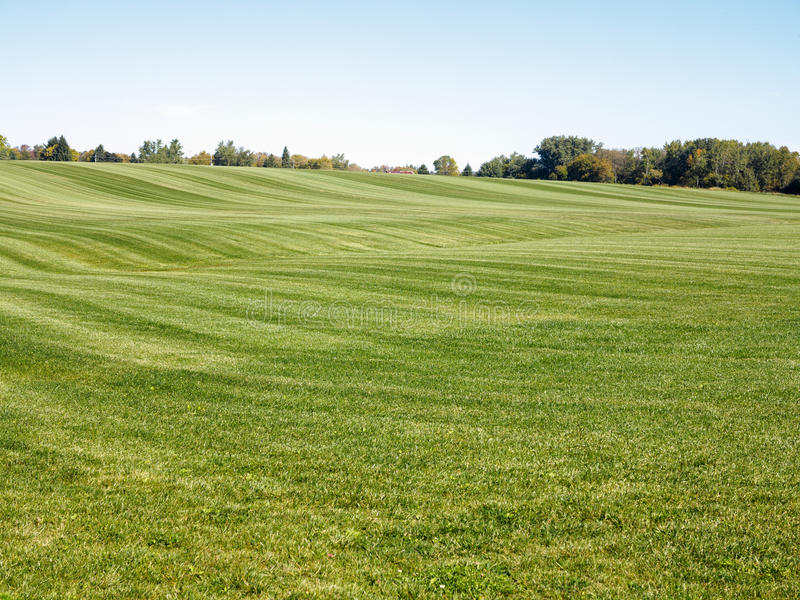 Sod Farm. Large field for growing grass royalty free stock images