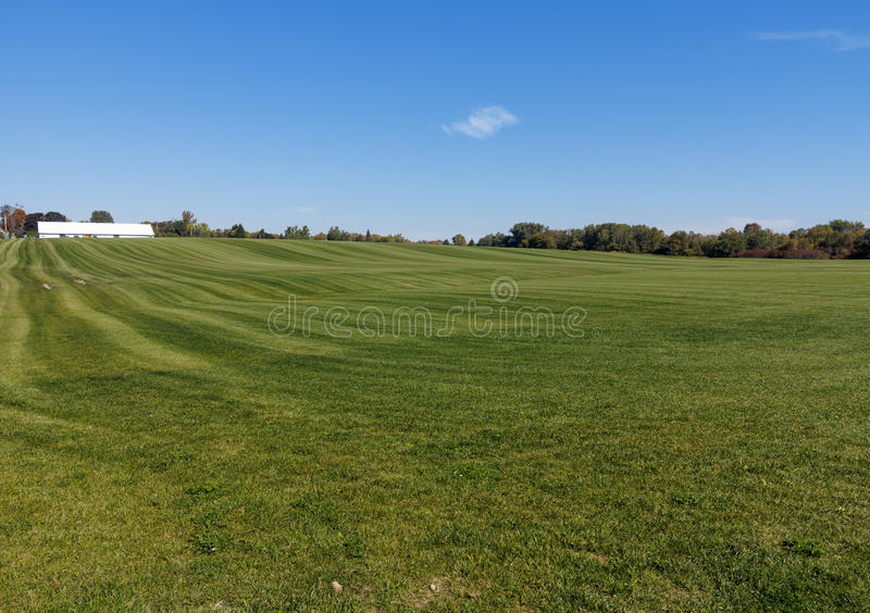 Sod Farm. Large field for growing grass royalty free stock photos