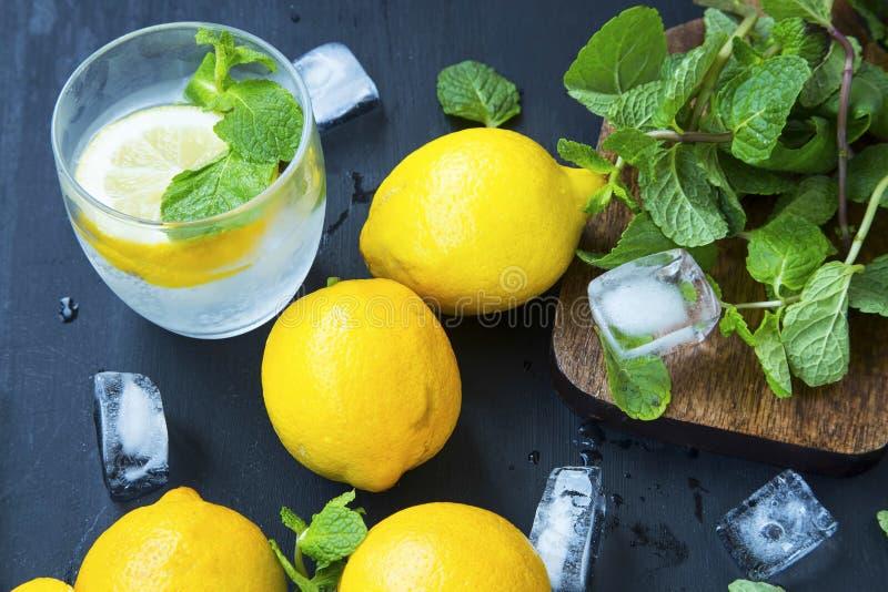 Soda del limón con las hojas de menta y los cubos de hielo, fruta cítrica fresca infundida imagen de archivo