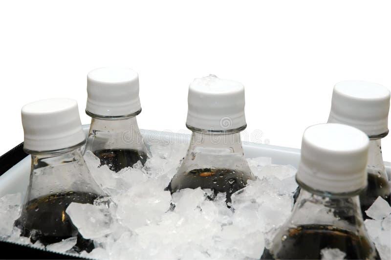 Soda op Ijs royalty-vrije stock foto's