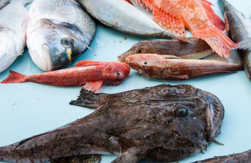 Mercato di pesci fotografia stock