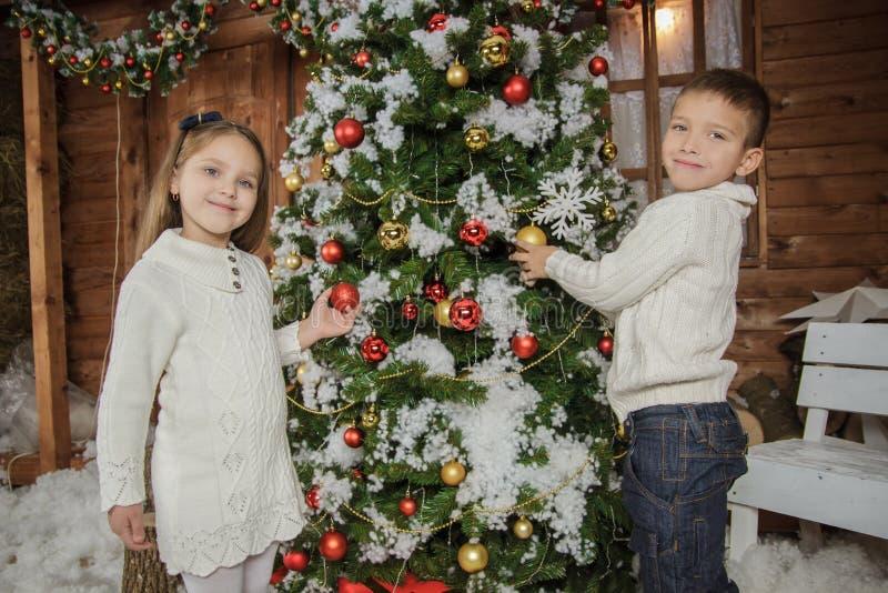 Soeur et frère décorant l'arbre de Noël image libre de droits