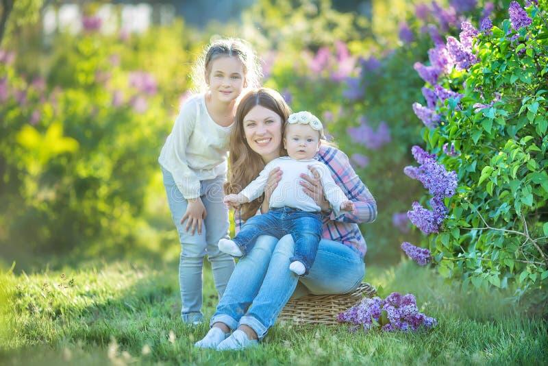Soeurs avec la mère jouant dans le jardin lilas de floraison Petites filles mignonnes avec le groupe de lilas dans la fleur Enfan image libre de droits