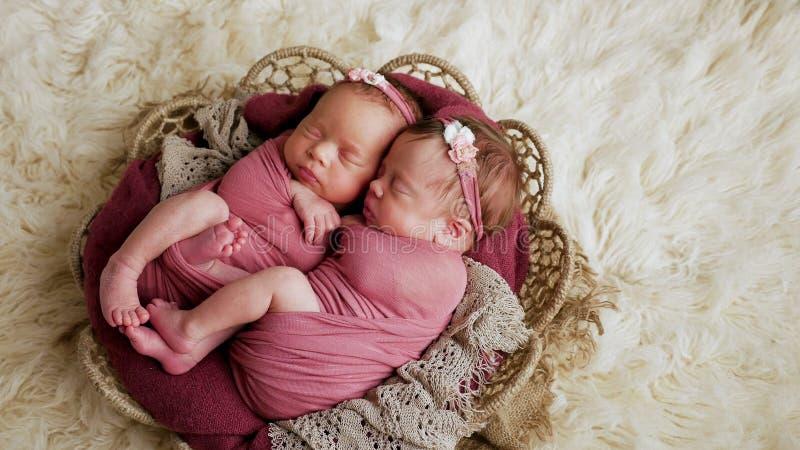 Soeurs de jumeaux nouveau-nées dans l'enroulement et dans un panier image stock