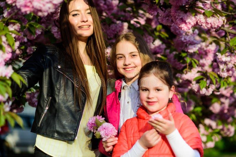 soeurs heureuses en fleur de cerise Fleur de Sakura Beaut? normale la fleur de jour donne ? des m?res le fils de momie ? ?t? de f photos stock