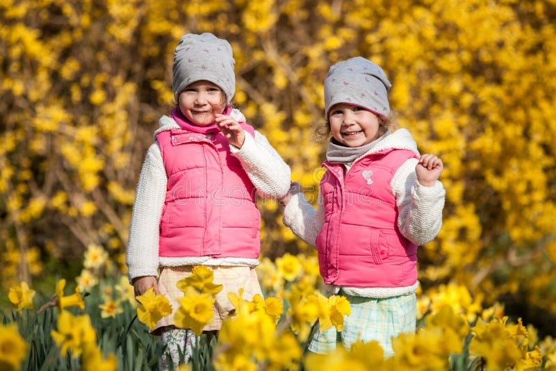 Soeurs jumelles mignonnes, étreinte sur un champ de fond avec les fleurs jaunes, soeurs mignonnes et belles heureuses ayant l'amu photo stock