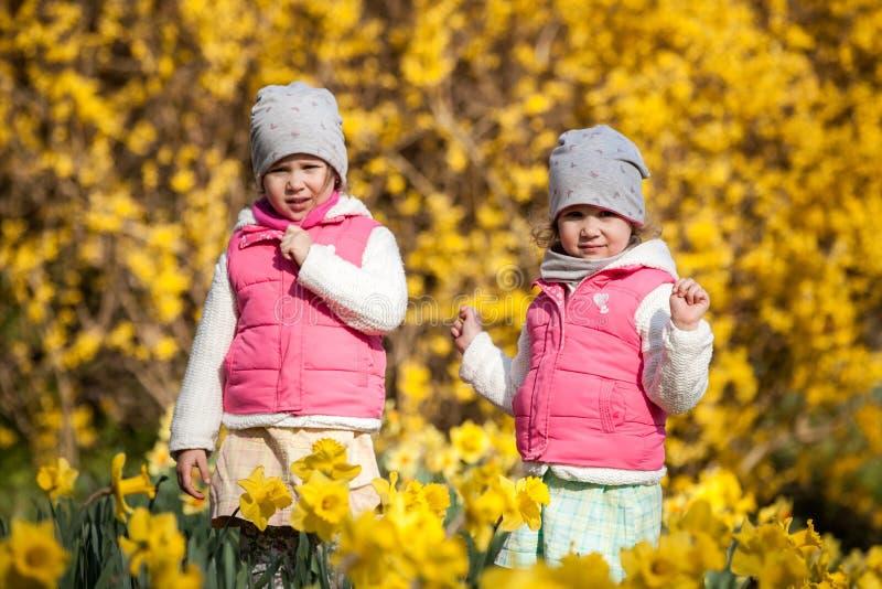 Soeurs jumelles mignonnes, étreinte sur un champ de fond avec les fleurs jaunes, soeurs mignonnes et belles heureuses ayant l'amu image libre de droits