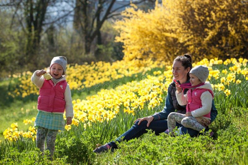 Soeurs jumelles mignonnes, étreinte sur un champ de fond avec les fleurs jaunes, soeurs mignonnes et belles heureuses ayant l'amu photo libre de droits