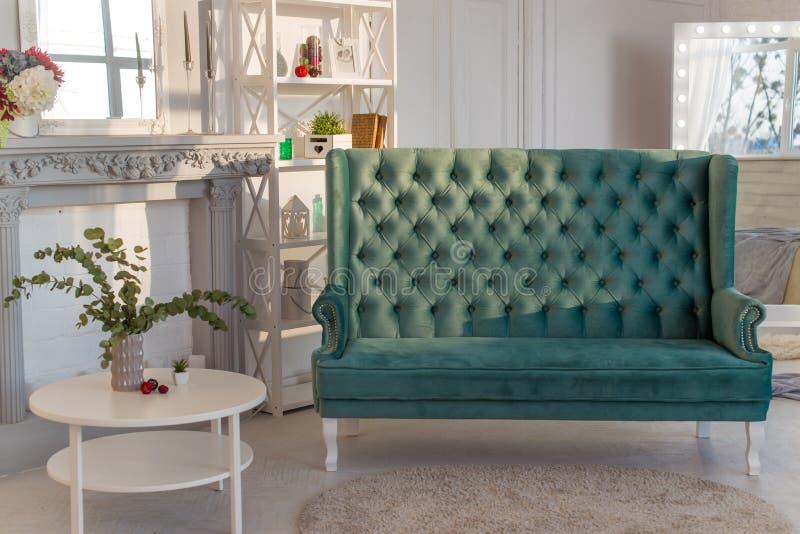 Sofà accogliente, scaffalatura, tavolino da salotto, vaso con l'eucalyptus ed accessori decorativi in un interno elegante del sal immagini stock
