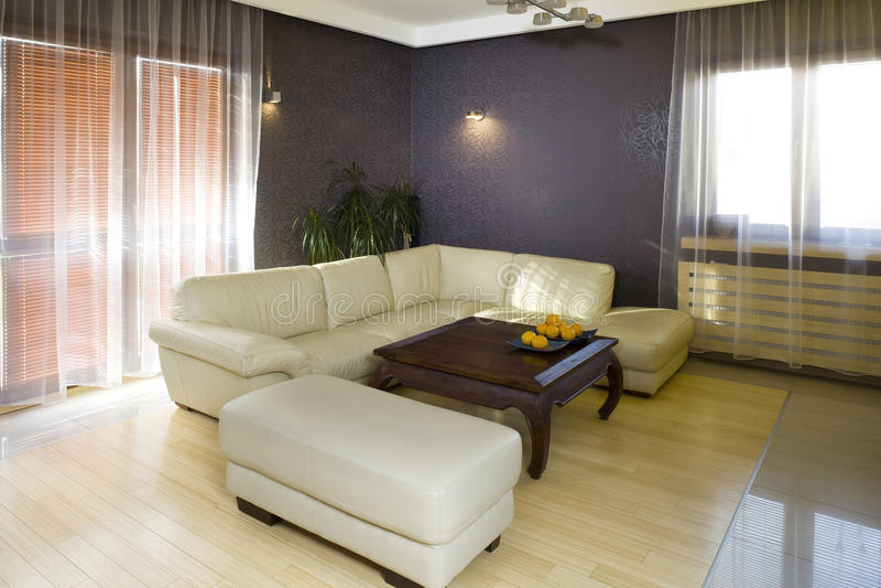 Sofá en sala de estar moderna fotos de archivo libres de regalías