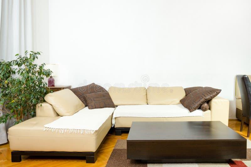Sofa angulaire, dîner-chariot, usine, rideaux, vase images libres de droits