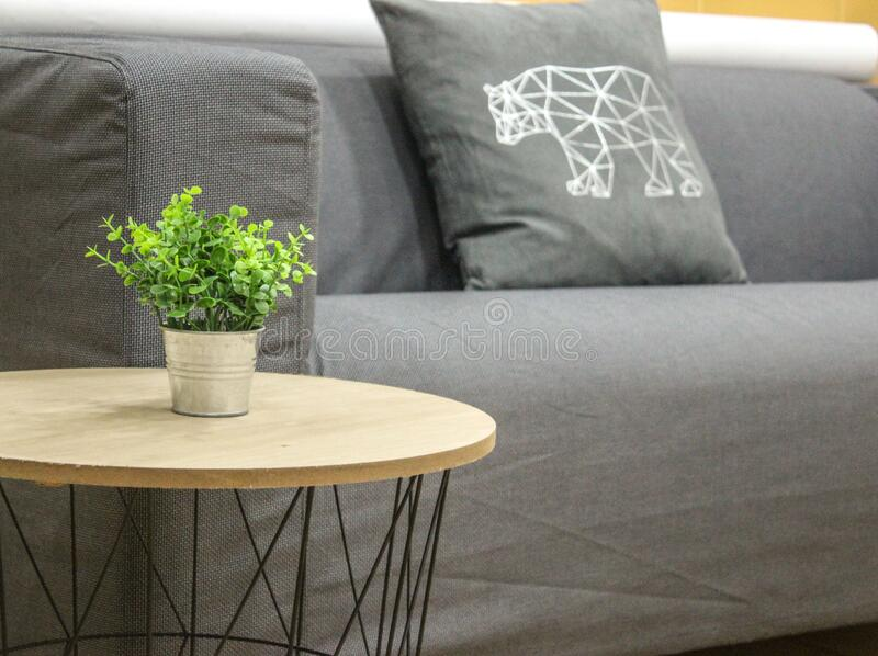 Sofa with cushion and side table with flower pot. Grey Sofa and grey bear pillow with cushion and side table with flower pot royalty free stock photo
