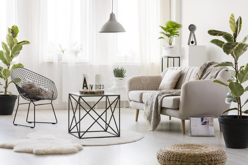 Sofa dans le salon lumineux image stock