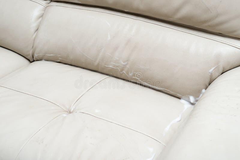 Sofa en cuir avec le liquide savonneux photos libres de droits