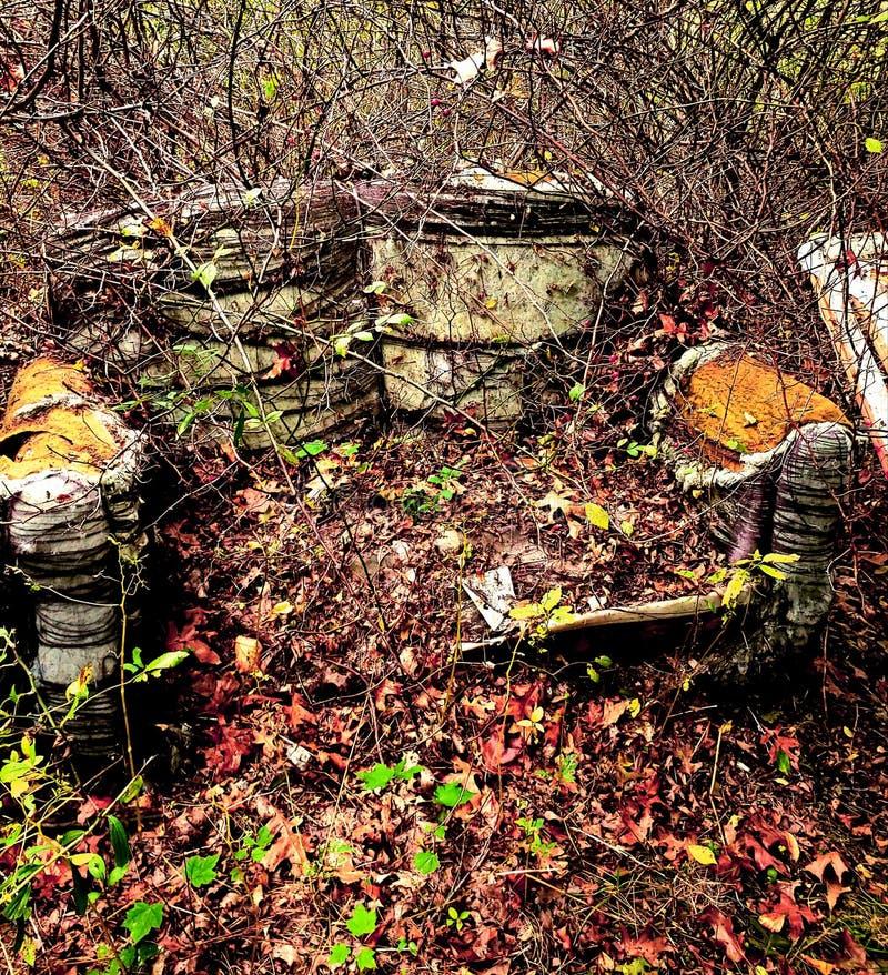 sofa nei boschi 2 immagini stock