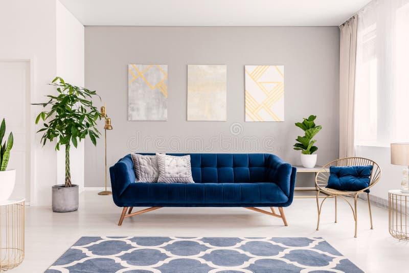 Soffa för kungliga blått med två kuddar som står i verkligt foto av den ljusa vardagsruminre med nya växter, fönster med gardiner arkivfoton