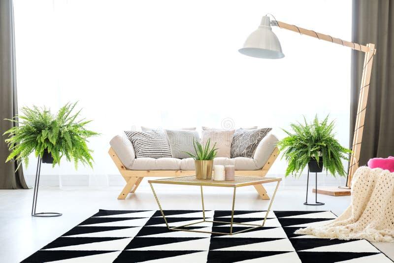 Soffa i lägenhet med ormbunkar fotografering för bildbyråer