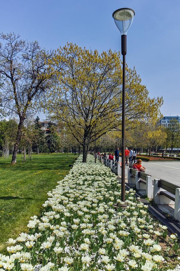 Flower garden and National Palace of Culture in Sofia, Bulgaria stock image