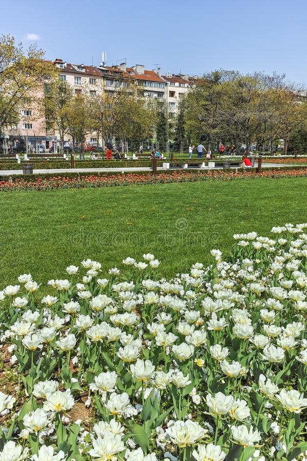 Flower garden and National Palace of Culture in Sofia, Bulgaria royalty free stock photo