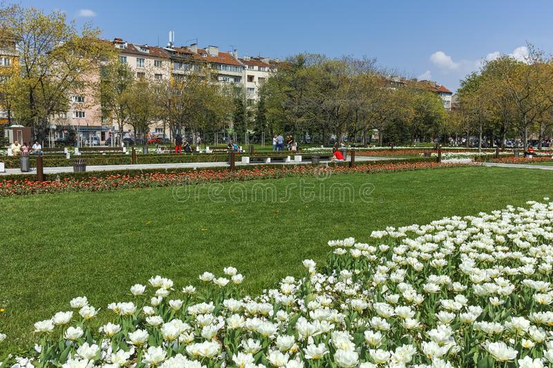 Flower garden and National Palace of Culture in Sofia, Bulgaria royalty free stock photos