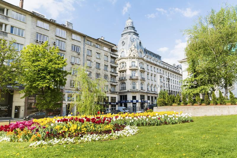 Green garden with flowers in the center of Sofia,Bulgaria royalty free stock photography