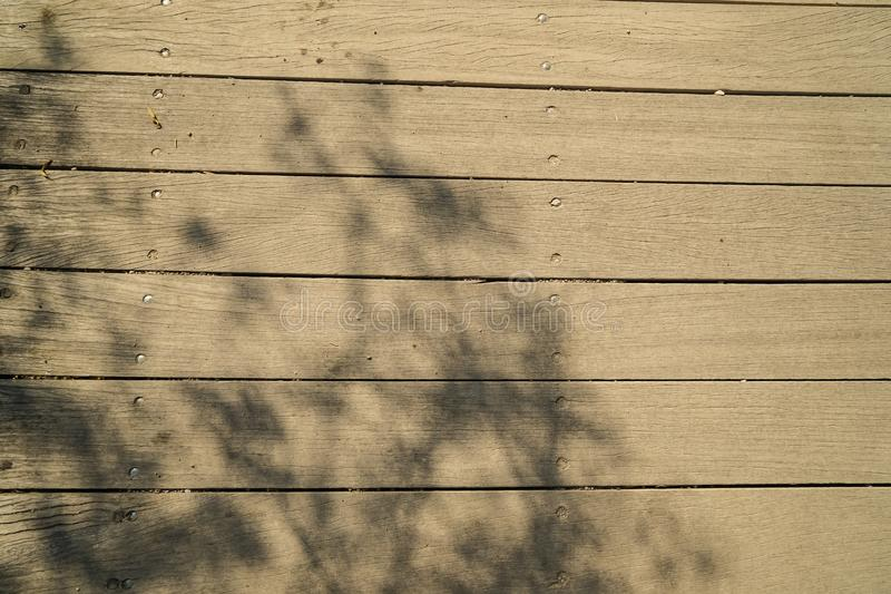 Soft abstract natural pattern of olive tree branches shadow on light brown wooden plank strip grain texture surface walkway royalty free stock photo
