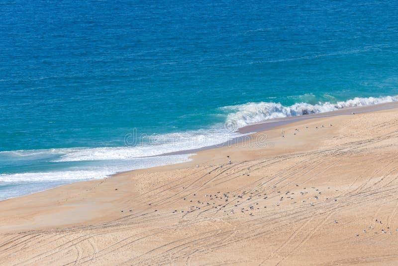 Soft blue ocean wave on sandy beach. Background.  royalty free stock photos