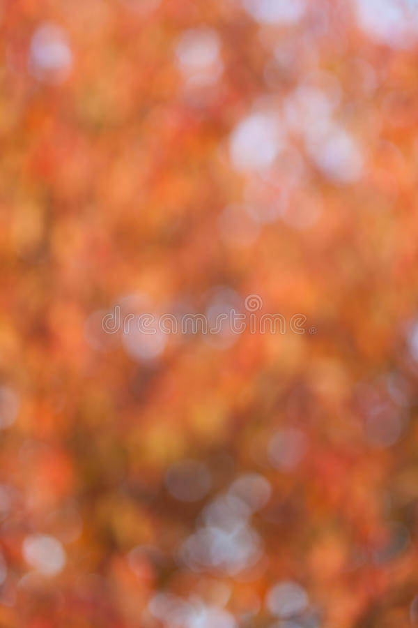 Download Soft, Blurry, Photographed Bokeh Background Stock Photography - Image: 27324152