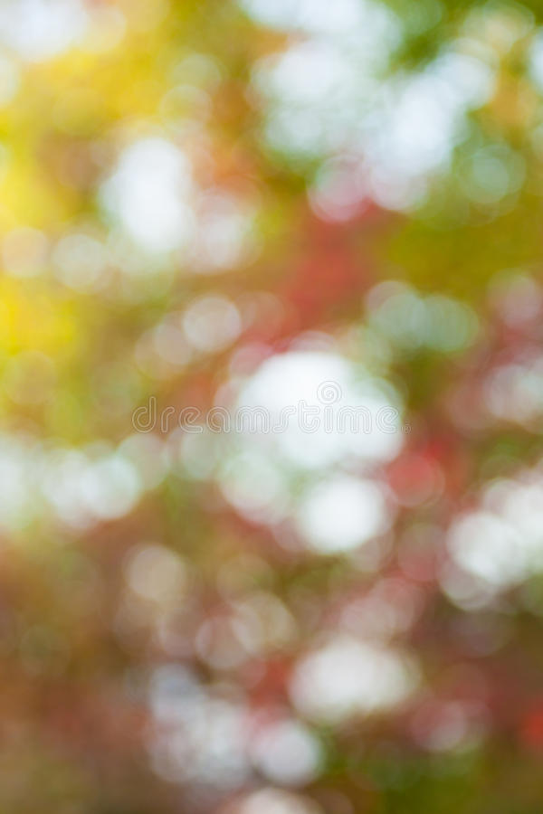 Download Soft, Blurry, Photographed Bokeh Background Stock Image - Image: 27324333