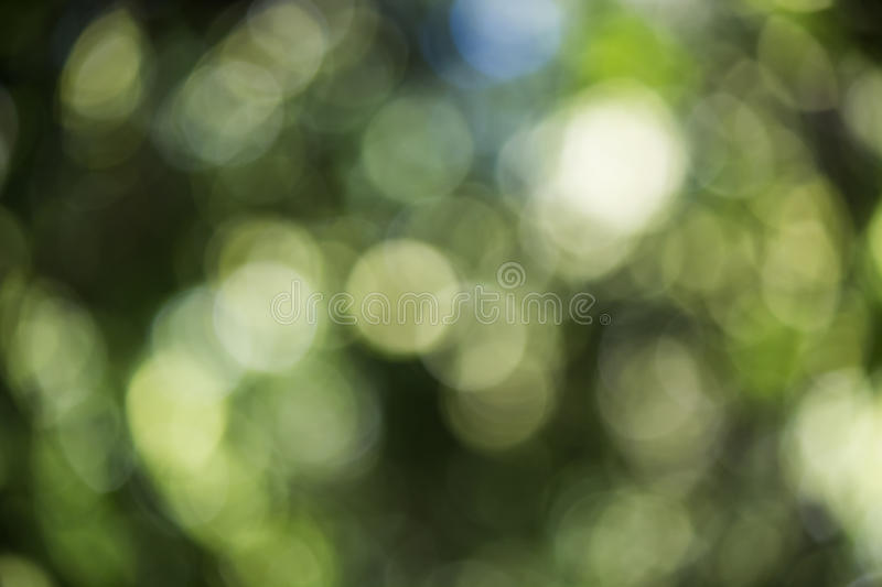 Soft bokeh background. Soft background take by lens blur royalty free stock photo