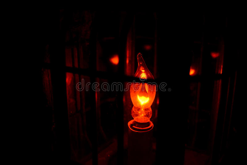 Soft Bulb stock image