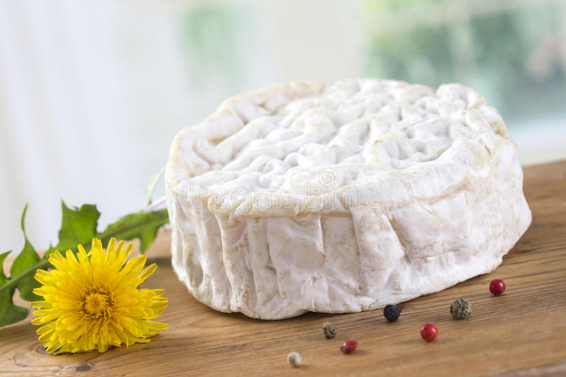 Soft cheese camenbert. Whole round of traditional camenbert cheese from Normandy stock photography