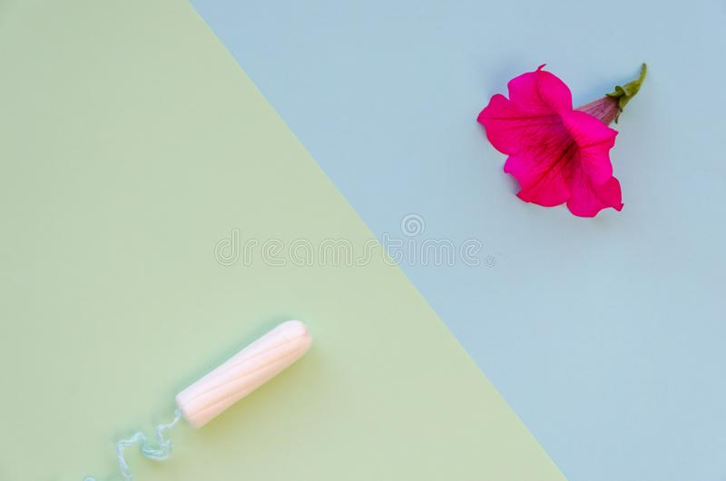Soft cotton tampon for women period days in front of a petunia flower. Hygiene products for women`s monthly menstruation. Soft cotton tampon for women period stock photo