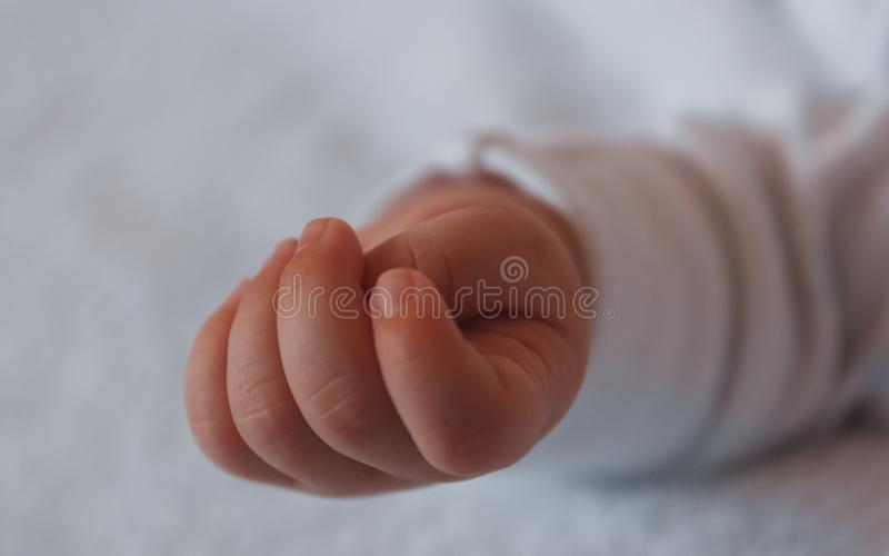Soft focus of closeup closed baby hand lying relaxed. royalty free stock image