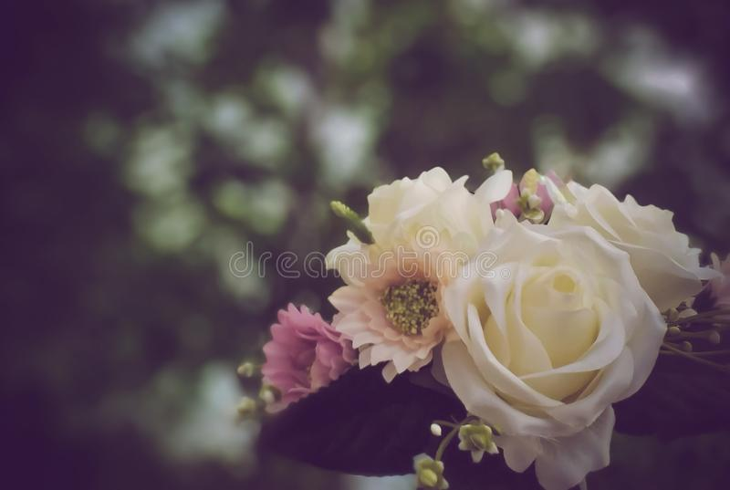 Soft focus on a white flowers bouquet. Beautiful vintage color tone. Soft focus on a white flowers bouquet. Beautiful vintage color. Bokeh, blur, blurred, light stock photo